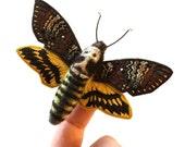 Death's Head Moth - Textile Moth Clip and Brooch