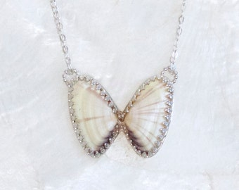 Coquina Shell Butterfly Necklace Sterling Silver - Eco Friendly Nickel Free Recycled Silver - One of Kind - Ready to Ship