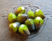 NEW BRIGHT Avocado DROPS .  Czech Picasso Glass Beads . 6 mm by 8 mm (10)