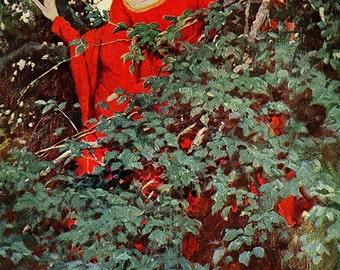 For A Heart-Beat She Saw Him, Howard Pyle, Vinatge Art Print