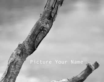 L photograph - Alphabet photography - Alphabet photos - Alphabet print - Photo letter - Name pictures - Name photographs - Letter photograph