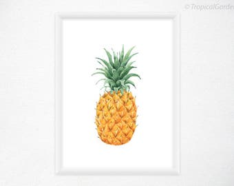 Pineapple Art Print - Pineapple Watercolor Kitchen Art, Fruit Print/ 8x11 Tropical Wall Decor, Pineapple Decor