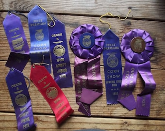8 Vintage ribbon award lot / altered art supplies / mixed media / repurpose / upcycle / rosette / FFA / 1953 / 1954 / county fair