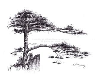 Tree N.2 - Ink art - Print of ink drawing