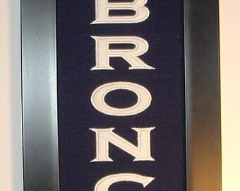 Denver Broncos Superbowl 50 Championship Banner....Framed
