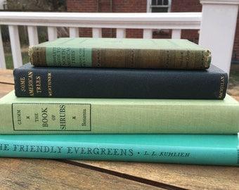 Vintage Garden Books Green Books Trees Shrubs Evergreens