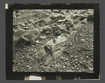 1980s Sepia Photograph Vintage Rocks Photo 9.25 x 11.25 Professional Photography Wall Art