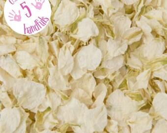 Half a Litre approx 5 guests Natural Wedding Confetti Eco-Friendly Biodegradable Dried Delphinium Petals Vanilla, cream / ivory
