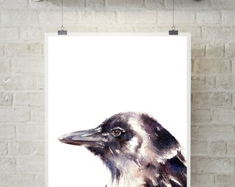 Raven fine art print, watercolor painting of bird, bird painting, bird print, raven painting, wall art
