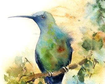Hummingbird art print, watercolor painting of bird,bird art, modern wall art, bird illustration, bird poster, blue green
