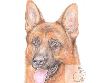 Rex the German Shepherd -  Blank Card