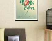 Old fashioned Roses Print...