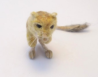 Pygmy Jerboa Needle Felted Shoulder Pet with Magnets