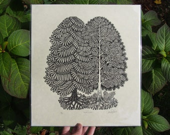 Young Pines - Woodcut Print, Woodblock Print by Tugboat Printshop, Valerie Lueth