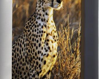 Canvas 24x36; Cheetah, Serengeti National Park In Tanzania