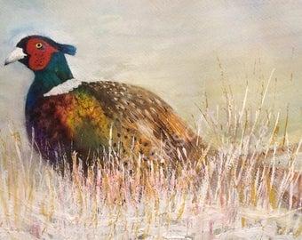 Pheasant - Giclee Print