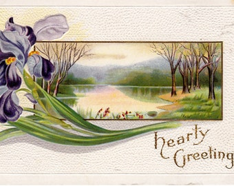 Purple Iris Hearty Greetings Vintage Postcard Circa 1910's Collectible Postcard Embossed Hearty Greetings