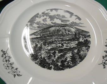 Wedgwood Plate- STONE MOUNTAIN