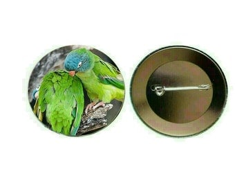 Blue-crowned Conure 55mm Button Pin Badge (PG-0773)