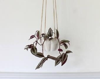Porcelain jelly mould hanging planter