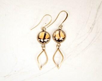 Real Butterfly Earrings - Real Butterfly Wing - Dangle Earrings - Gift for Her - Diamond Drop - Monarch Earrings - Insect Jewelry