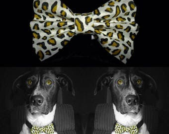 WhiteLeopard Dog Bow Tie - White