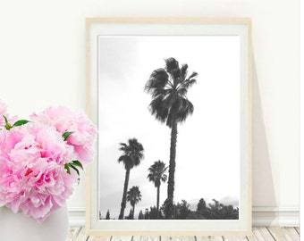 Palm Tree Print, Printable Art, Palm Photo, Palm Trees, Tropical Print, black and white Photo, Nature Photo, digital download,  Wall Art