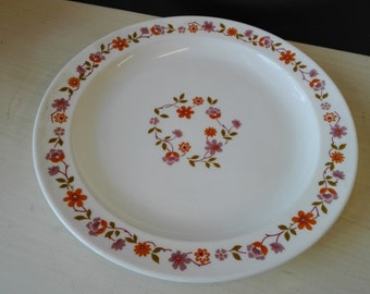 Arcopal scania, diner plates