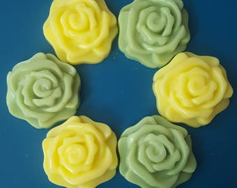 Citrus & Sage Soy Wax Tarts | Wax Melts | Soy Wax Flowers | Warmer Melts