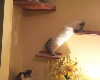 Floating Cat Shelf Set / 3 Short Shelves w/ Hidden Brackets