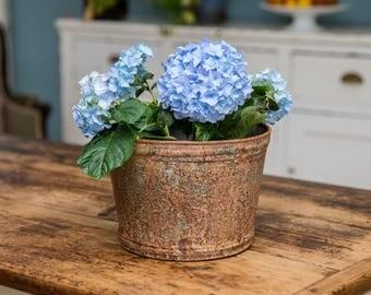 Wide Aged  Zinc Planter Plant Pot