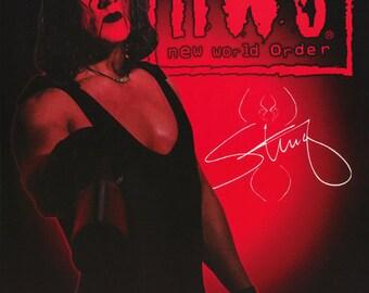 Wrestling NWO Sting Poster