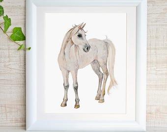 Horse Watercolor Painting White Horse Nursery Art Horse Print Animal Print Nursery Decor Horse Gift Wall Art Kids Room Play Room Decor Foal