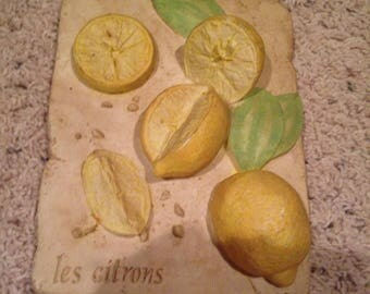 Lovely lemon hot plate that can be hung on wall to put away  in excellent condition
