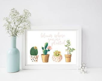 Bloom You Are Planted Succulent Print