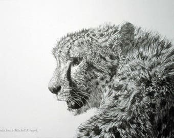 Watching, an original graphite drawing by Amanda Smith-Mitchell
