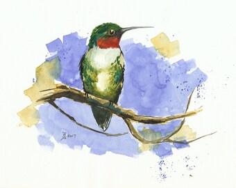 Watercolour print - Hummingbird by Judit Szabo