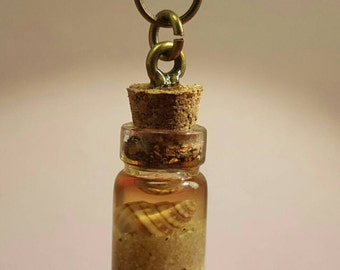 Glass vials with shell on bronze chain