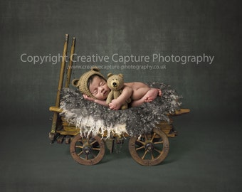 Newborn Digital backdrops / backgrounds / vintage cart / Girl or Boy