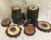 Rustic Woodlands Assortment