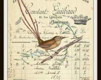 Bird Botanical Script Crown Printable Instant Download Vintage Transfer Fabric digital collage sheet printable instant art graphic print