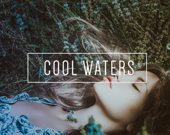 Cool Waters Indie Muse Collection 3 Presets  4 Tool Presets 9 LR Brushes Lightroom Presets for Professional Results by LouMarksPhoto