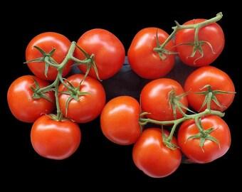 Solanum pimpinellifolium (Red Current Tomato) 30 Seeds F19tr