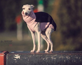 italian greyhound clothing - pink jumper