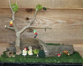 Peeping Gnomes