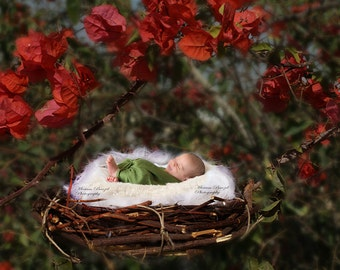 Newborn digital backdrop nest with red flowers