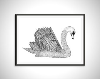 Swan Print - Art Print - Hand Drawn Illustration