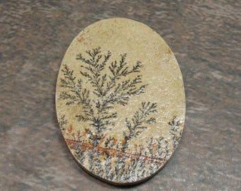 Dendritic Limestone  Cabochon 61x41 mm- Item 75251