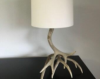 Mule deer antler lamp.