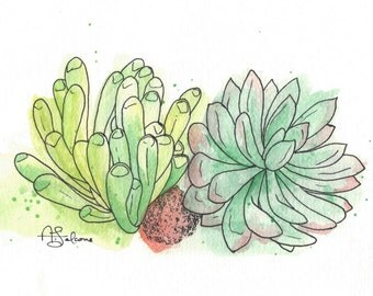 "Baby Toes Succulents 8x10"" Matted Giclée Print"